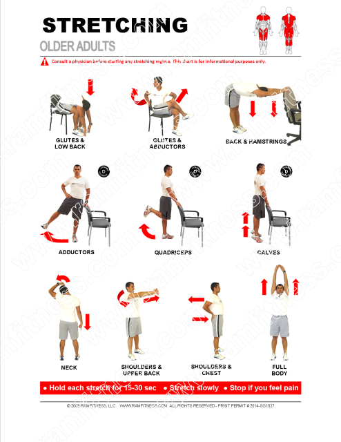 Stretching Guide For Older Adults Pdf File Plus Tracking