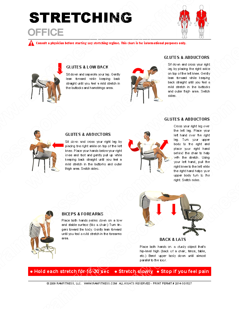 "Store > Stretching Guides - 8.5"" x 11"" > Office Stretches"